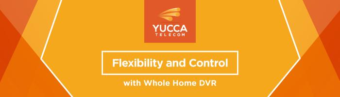 Yucca_TV+DVR_SMslider-2_v1 (1)